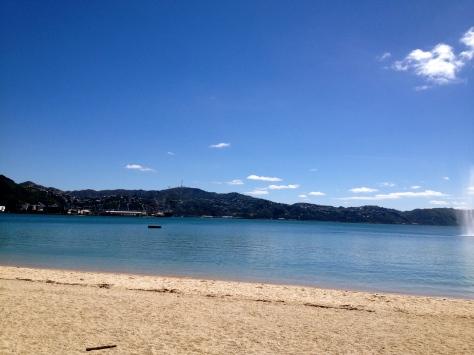 Oriental Bay, Wellington. Appreciate.
